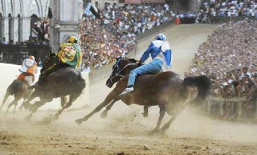 Siena's Palio Horse Race with guide