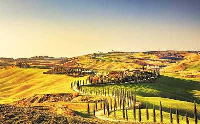 tours from siena and wine tasting